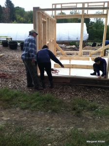 Shed is framed using all wood milled on site